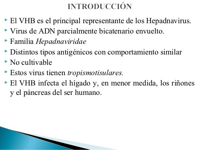  El VHB es el principal representante de los Hepadnavirus. Virus de ADN parcialmente bicatenario envuelto. Familia Hepa...
