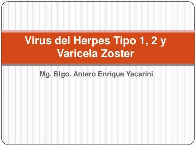 Virus del Herpes Tipo 1, 2 y      Varicela Zoster  Mg. Blgo. Antero Enrique Yacarini