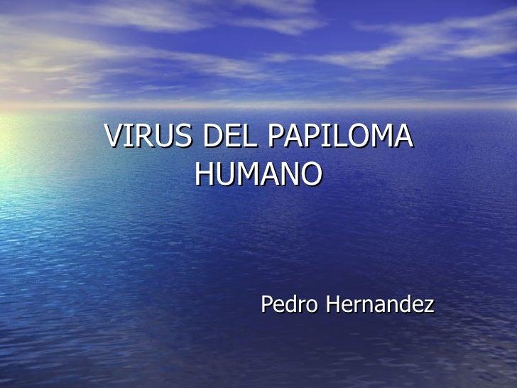 VIRUS DEL PAPILOMA HUMANO Pedro Hernandez
