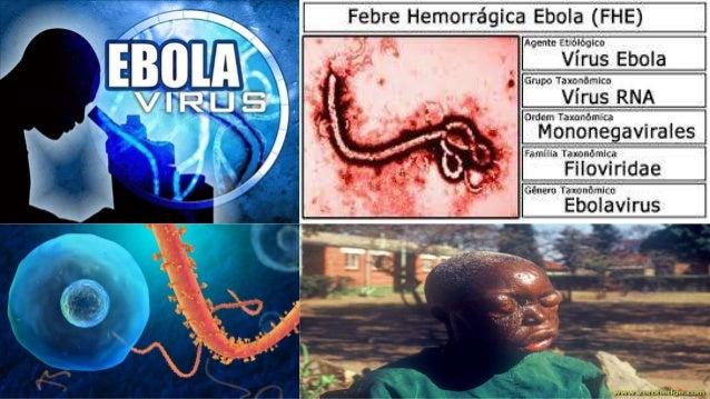 Doença já matou mais de 4 mil pessoas; Cinco países africanos, Espanha e EUA concentram contaminações.  (O Globo/10/10/14:...