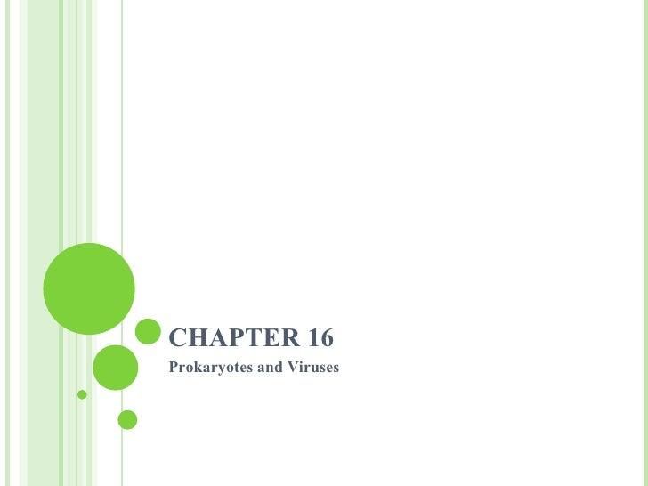 CHAPTER 16 Prokaryotes and Viruses