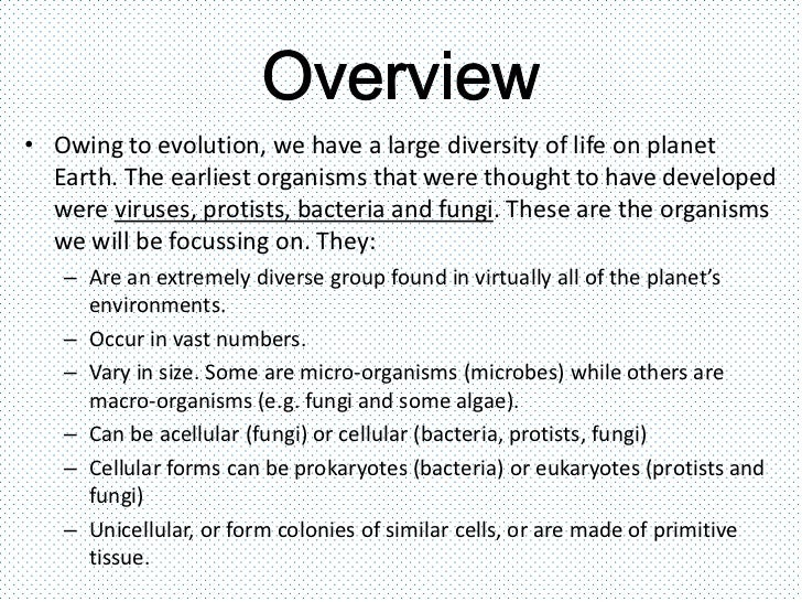 Viruses bacteria protists and fungi – Protists Worksheet