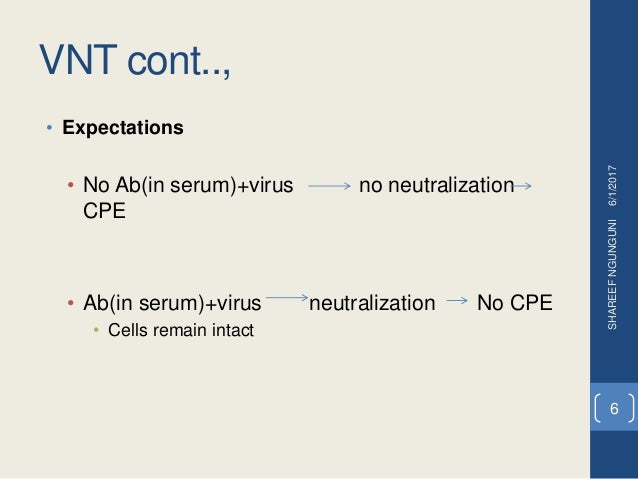 VNT cont.., • Expectations • No Ab(in serum)+virus no neutralization CPE • Ab(in serum)+virus neutralization No CPE • Cell...