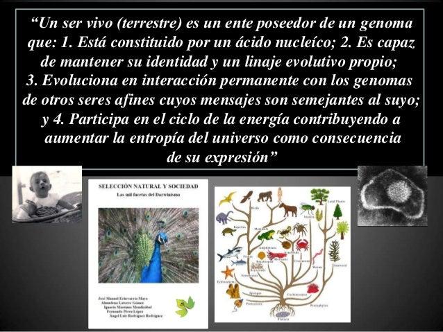Clasificación de los seres vivos por comparación de genomas • Comparación de secuencias de genes estructurales comunes • C...