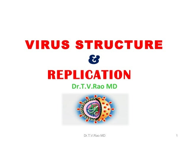 VIRUS STRUCTURE & REPLICATION Dr.T.V.Rao MD Dr.T.V.Rao MD 1