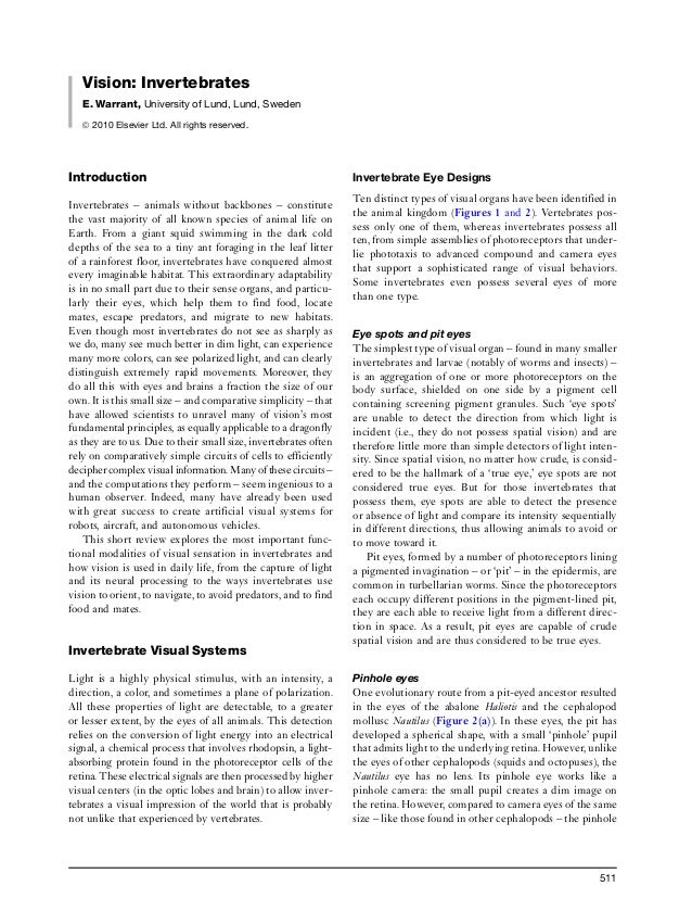 Vision: Invertebrates E. Warrant, University of Lund, Lund, Sweden ã 2010 Elsevier Ltd. All rights reserved. Introduction ...