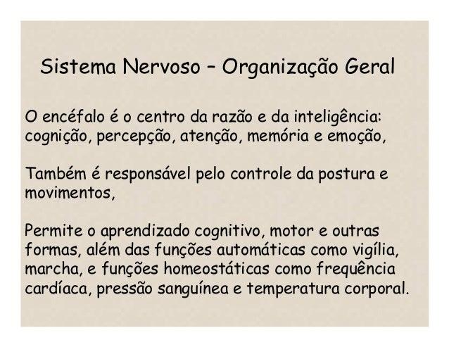 O encéfalo é o centro da razão e da inteligência: cognição, percepção, atenção, memória e emoção, Também é responsável pel...