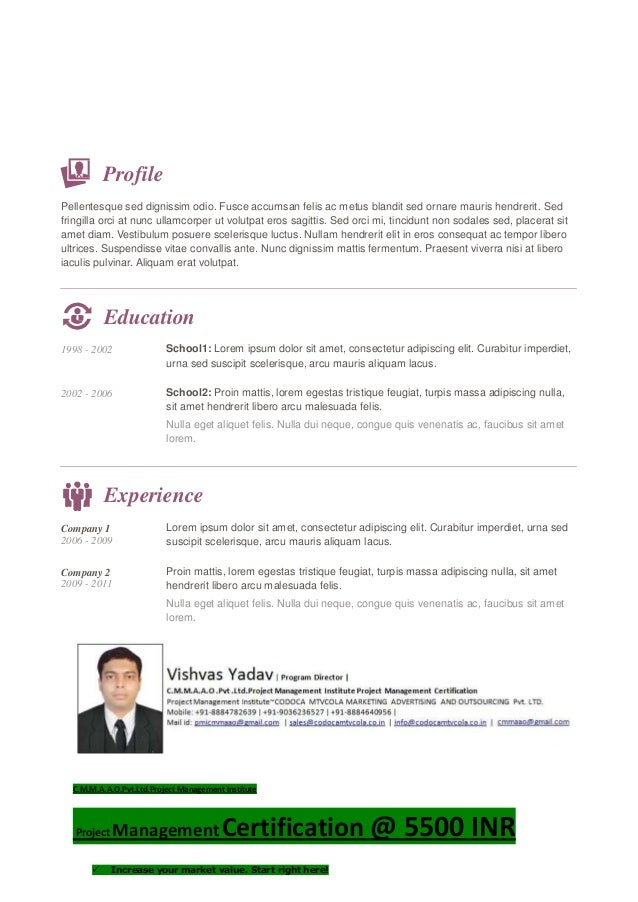 Your Name . My Job Title Phone nr.: 012 / 345 - 6789 / Email: my-name@myemail.com Profile Pellentesque sed dignissim odio....