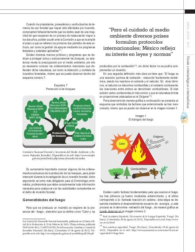 19 ABRIL-JUNIO2015Visióncriminológica-criminalística Esquema 8 Factores en los combustibles vegetales Todos estos factores...