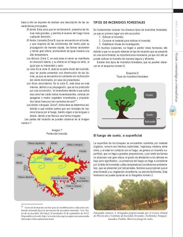 25 ABRIL-JUNIO2015Visióncriminológica-criminalística Los incendios forestales provocados negligentes, son aquellos que se ...