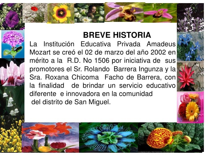 BREVE HISTORIA<br />La Institución Educativa Privada Amadeus Mozart se creó el 02 de marzo del año...