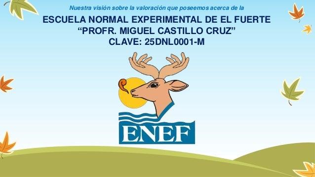 """ESCUELA NORMAL EXPERIMENTAL DE EL FUERTE """"PROFR. MIGUEL CASTILLO CRUZ"""" CLAVE: 25DNL0001-M Nuestra visión sobre la valoraci..."""