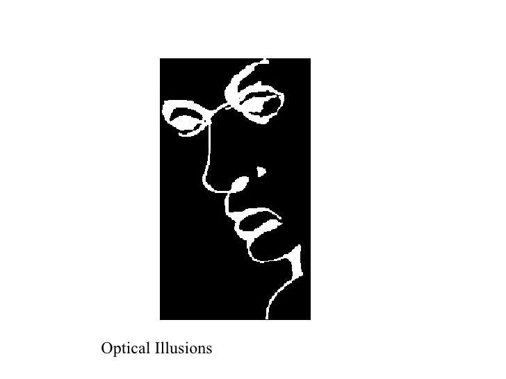 What doOptical Illusions