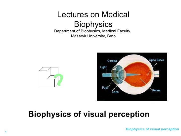 Biophysics of visual perception Lectures on Medical Biophysics Department of Biophysics, Medical Faculty,  Masaryk Univers...