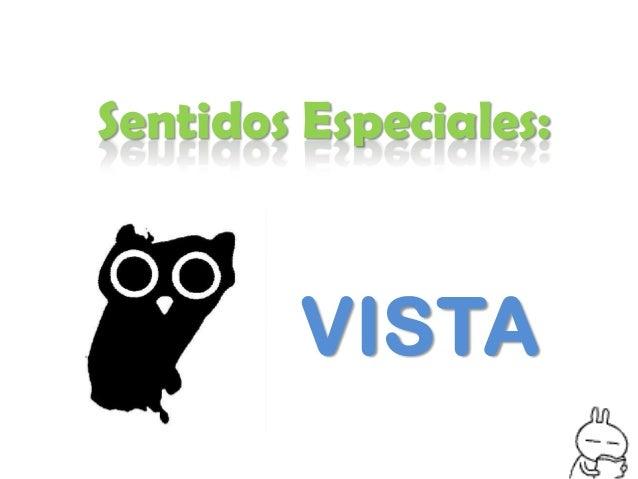 Sentidos Especiales:        VISTA
