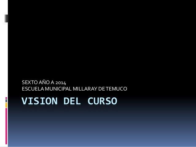 VISION DEL CURSO SEXTOAÑOA 2014 ESCUELA MUNICIPAL MILLARAY DETEMUCO