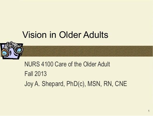 1Vision in Older AdultsNURS 4100 Care of the Older AdultFall 2013Joy A. Shepard, PhD(c), MSN, RN, CNE