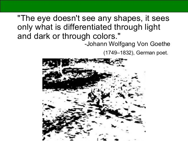 """The eye doesn't see any shapes, it sees only what is differentiated through light and dark or through colors."" -Johann Wo..."