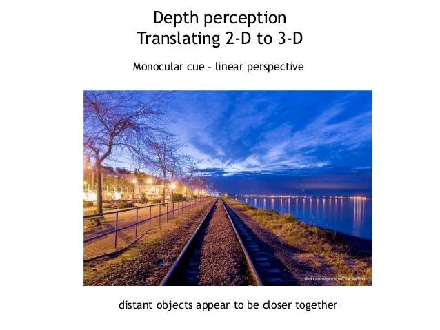 Vision Sensation Amp Perception