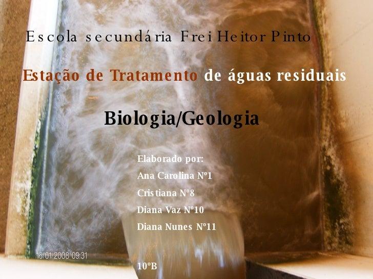 Estação de Tratamento   de águas residuais Escola secundária Frei Heitor Pinto Elaborado por: Ana Carolina Nº1 Cristiana N...
