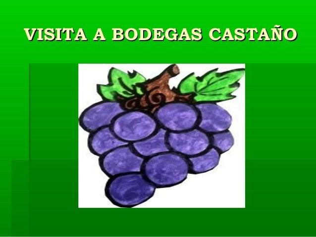 VISITA A BODEGAS CASTAÑO