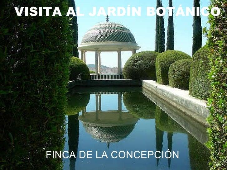 VISITA AL JARDÍN BOTÁNICO FINCA DE LA CONCEPCIÓN
