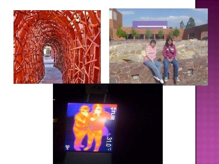 Visita a los museos
