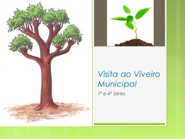 Visita ao Viveiro Municipal 1ª e 4ª Séries