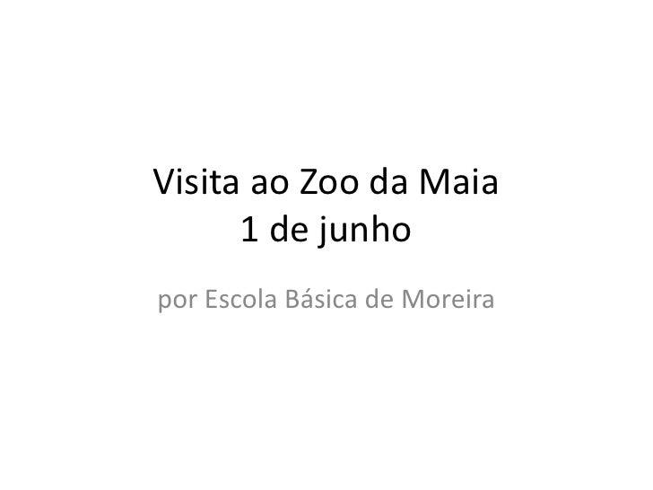 Visita ao Zoo da Maia      1 de junhopor Escola Básica de Moreira