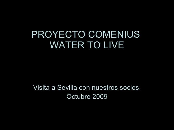 PROYECTO COMENIUS  WATER TO LIVE Visita a Sevilla con nuestros socios. Octubre 2009