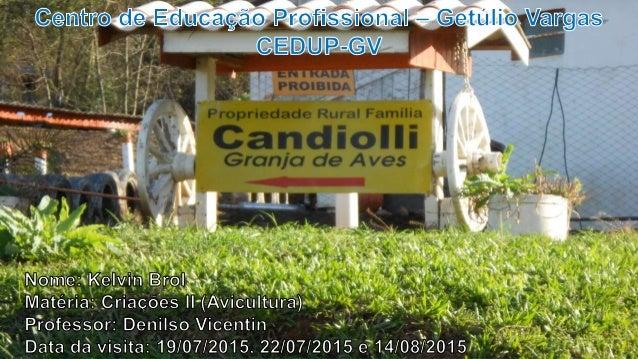 DADOS  Nome da propriedade: Propriedade Rural da Família Candiolli  Empresa integradora:  Tempo na atividade: 20 anos ...