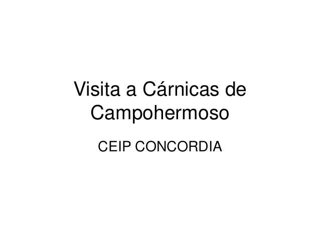Visita a Cárnicas de Campohermoso CEIP CONCORDIA