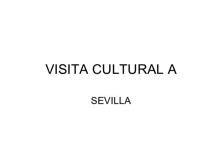 VISITA CULTURAL A SEVILLA