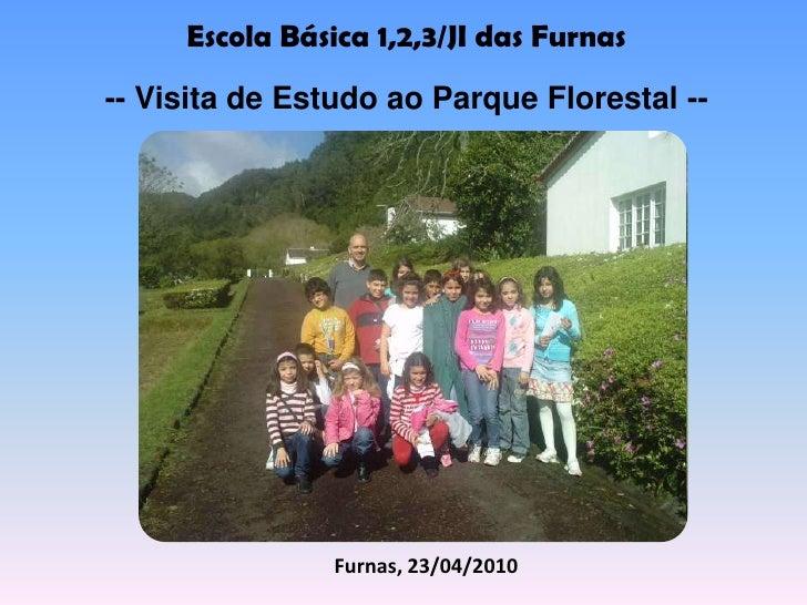 Escola Básica 1,2,3/JI das Furnas<br />-- Visita de Estudo ao Parque Florestal --<br />Furnas, 23/04/2010<br />