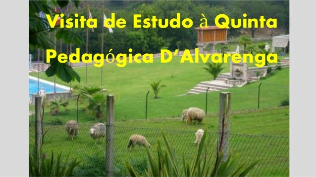 Visita de Estudo à Quinta  Pedagógica D'Alvarenga
