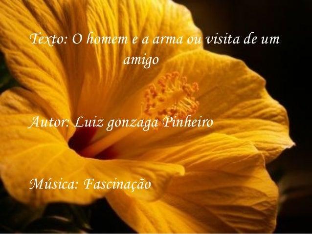Texto: O homem e a arma ou visita de um              amigoAutor: Luiz gonzaga PinheiroMúsica: Fascinação
