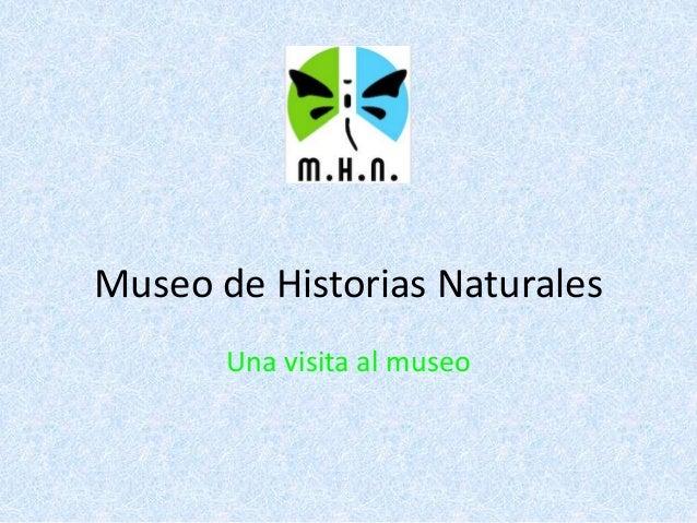 Museo de Historias Naturales Una visita al museo