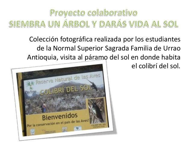 Colección fotográfica realizada por los estudiantes   de la Normal Superior Sagrada Familia de UrraoAntioquia, visita al p...