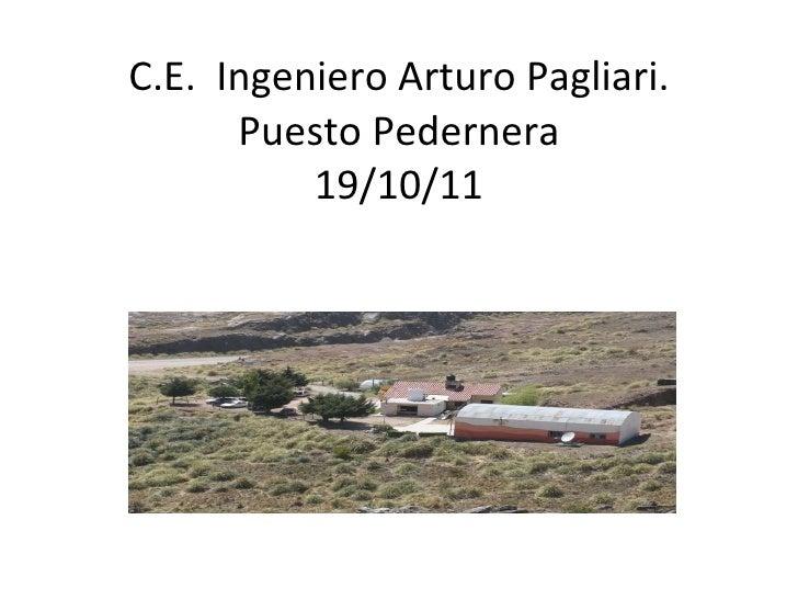 C.E.  Ingeniero Arturo Pagliari. Puesto Pedernera 19/10/11