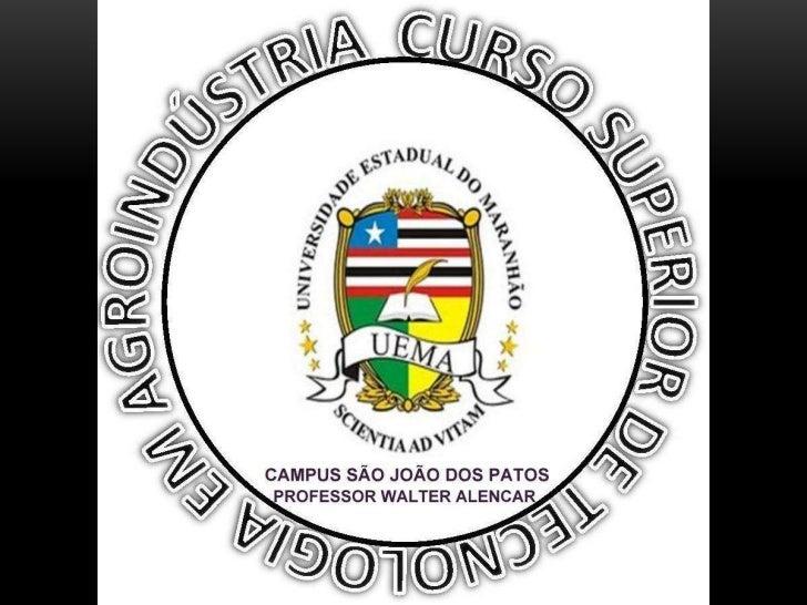 Visita técnica dos acadêmicos do Curso Superior de Tecnologia em Agroindústria do Campus UEMA de São João dos Patos