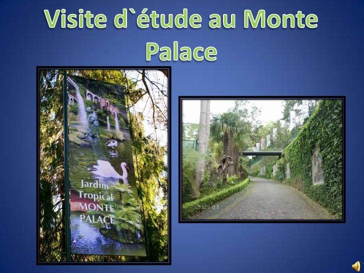 """ Au XVIII siècle, le Consul Anglais, Charles Murray, a achète une propriété au sud de l'église du """"Monte"""" , laquelle il t..."""