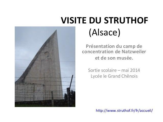 VISITE DU STRUTHOF (Alsace) Présentation du camp de concentration de Natzweiler et de son musée. Sortie scolaire – mai 201...