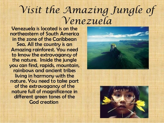 Visit the Amazing Jungle of            Venezuela Venezuela is located is on thenortheastern of South America in the zone o...