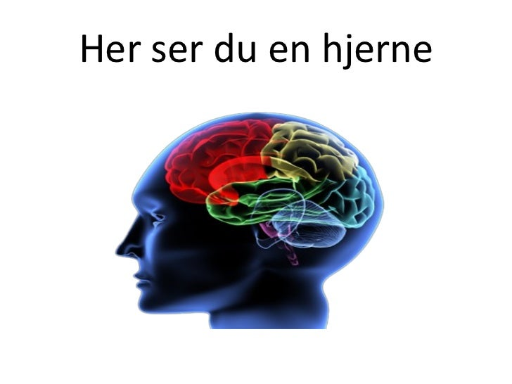 Her ser du en hjerne