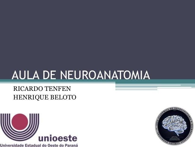 AULA DE NEUROANATOMIA RICARDO TENFEN HENRIQUE BELOTO