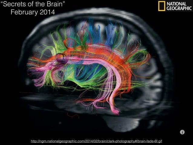 "http://ngm.nationalgeographic.com/2014/02/brain/clark-photography#/brain-fade-6f.gif ""Secrets of the Brain"" February 2014"