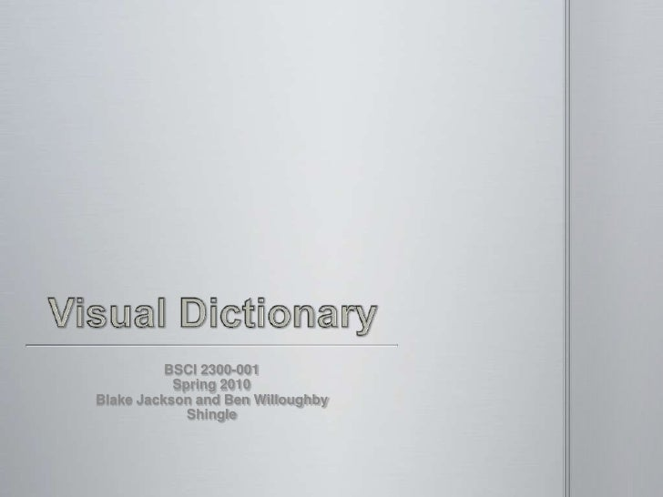 Visual Dictionary<br />BSCI 2300-001<br />Spring 2010<br />Blake Jackson and Ben Willoughby<br />Shingle<br />