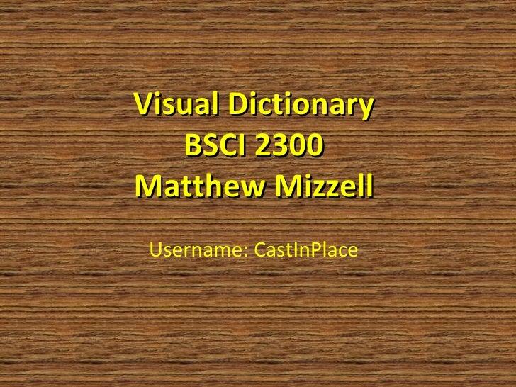Username: CastInPlace Visual Dictionary BSCI 2300 Matthew Mizzell