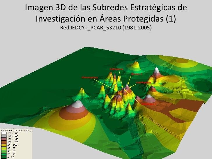 Imagen 3D de las Subredes Estratégicas de  Investigación en Áreas Protegidas (1)        Red IEDCYT_PCAR_53210 (1981-2005) ...