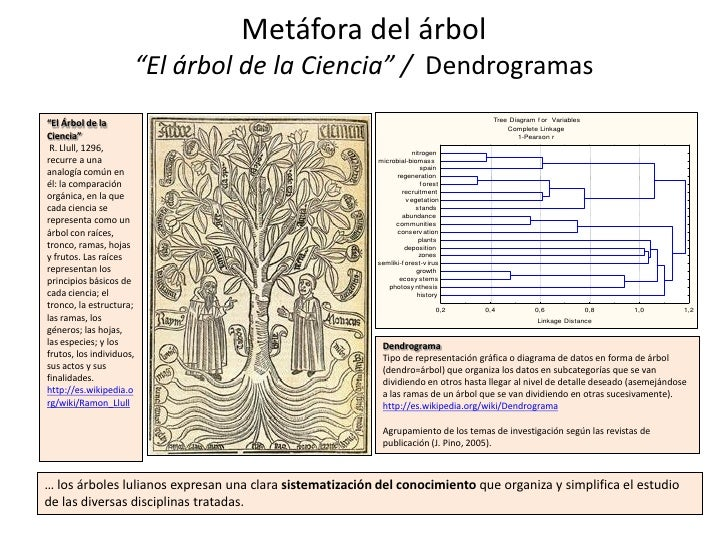 """Metáfora del árbol                      """"El árbol de la Ciencia"""" / Dendrogramas                                           ..."""